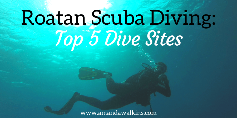 Jonathan Clarkin scuba diving in Roatan best dive sites