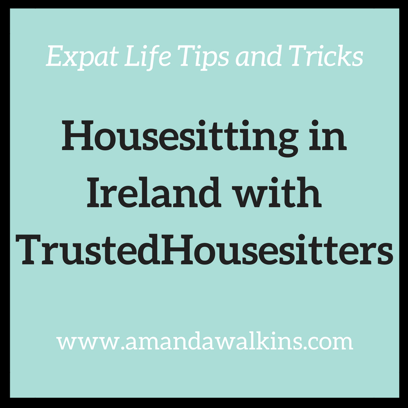 housesitting in Ireland with TrustedHousesitters